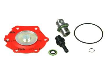 Lovato EasyFast Filter Flüssiggasphase + Reparatursatz RGJ 3 Verdampfer Typ B