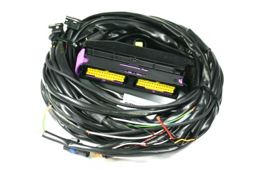 Landi Renzo Omegas arnés de cables de 3/4 cilindros para centralita OBD 616467000 (conectores MED GI25)