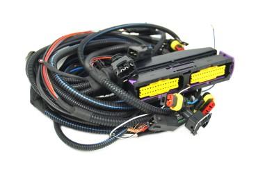 Stargas Elios - arnés de cables de 3/4 cilindros (incl. cable de interrupción, con tapón de inyector AMP)