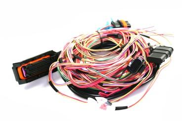 Prins VSI-2.1 - arnés principal de cables de 4/6/8 cilindros