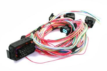 Prins VSI-2.0 - arnés de cables de 3/4 cilindros para inyectores KN9
