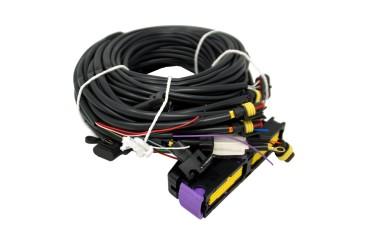 STAG 300-4 - arnés de cables de 4 cilindros