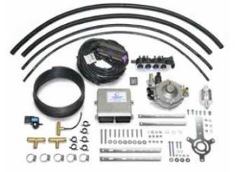 Landi Renzo Omegas Direct Li10 bis 160KW - 3-4 Zylinder